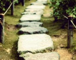 Дорожки из дикого камня  саду и на дачном участке